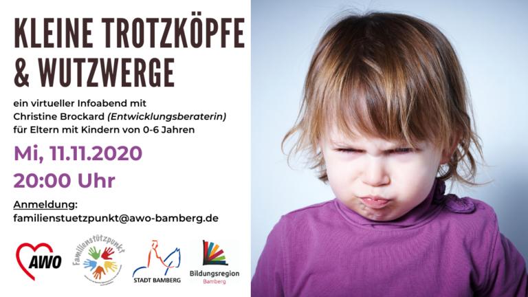 """Read more about the article Virtueller Info-Abend: """"Kleine Trotzköpfe und Wutzwerge"""""""